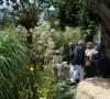 Evento Picnic 02 – Paghera's garden